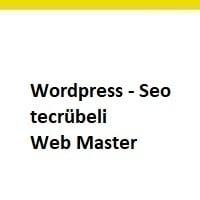 web master aranıyor, web master arayan, web master eleman ilanları, acil web master aranıyor, web master iş ilanı, web master iş ilanları sayfası, web master eleman ilan sayfaları